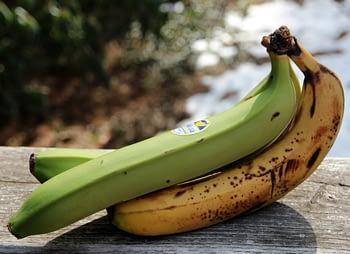 The Weirdest Bananas I've Ever Seen
