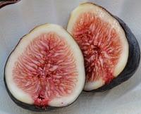fresh-fig-sliced-in-half